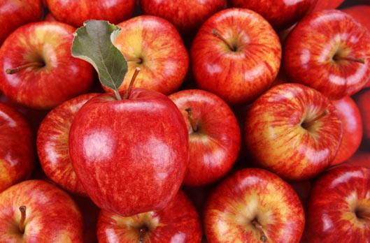 Bert S Red Apple